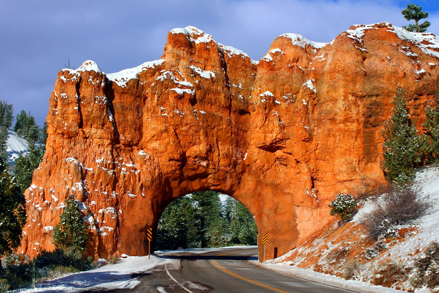 Dixie National Forest in Utah