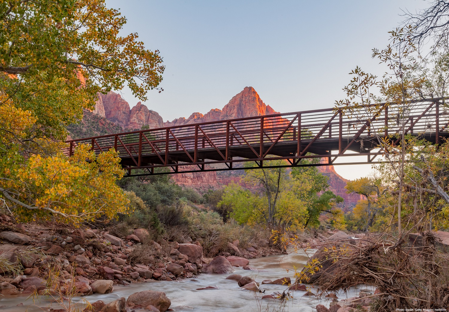 Head to Southern Utah this fall to experience the fall colors in Zion National Park!